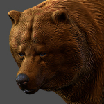 animated bear 3d model realtime render