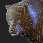 Brown bear 3d model wireframe topology