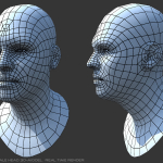 3d low poly head wireframe