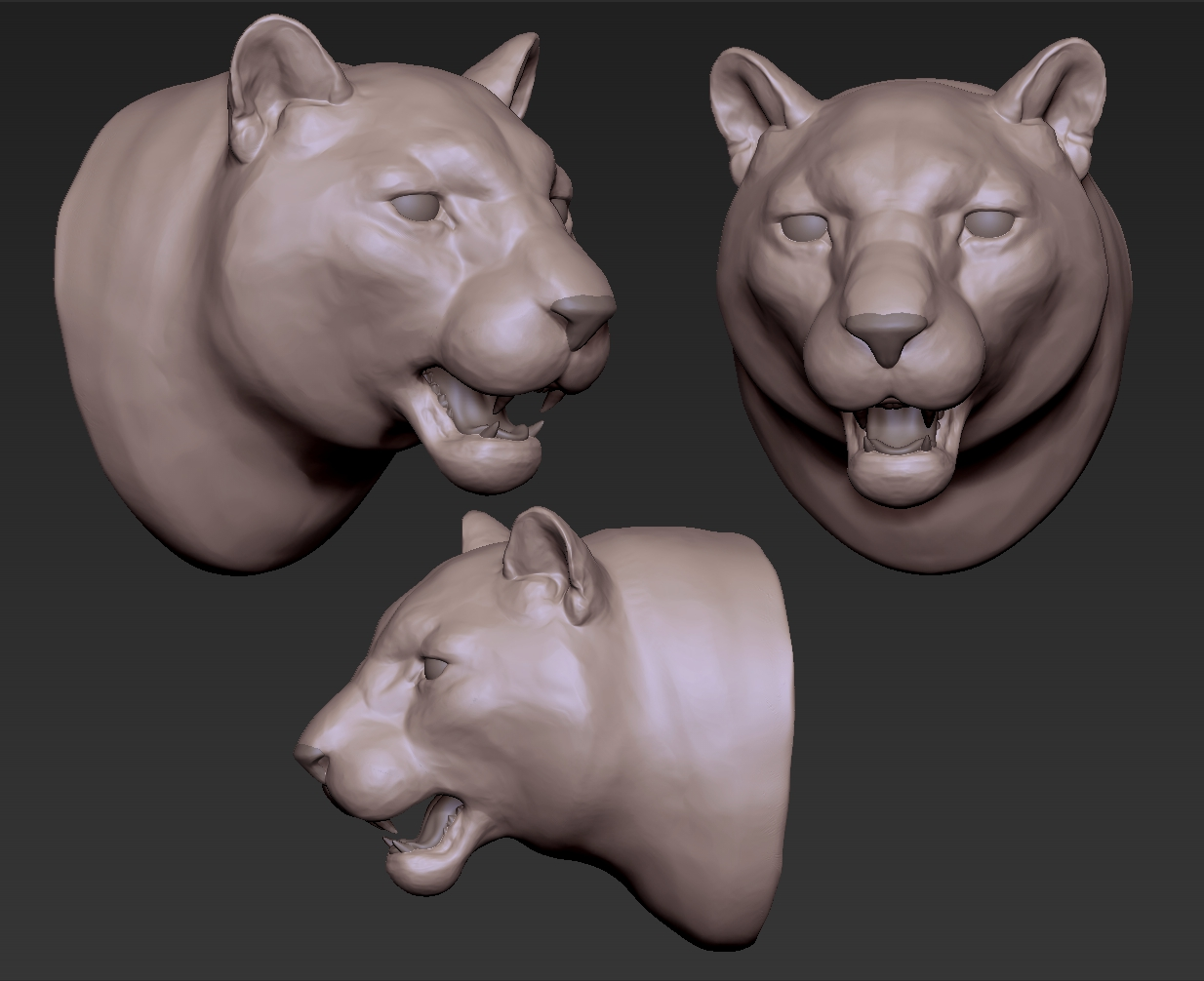 Leopard head sculpture in Zbrush