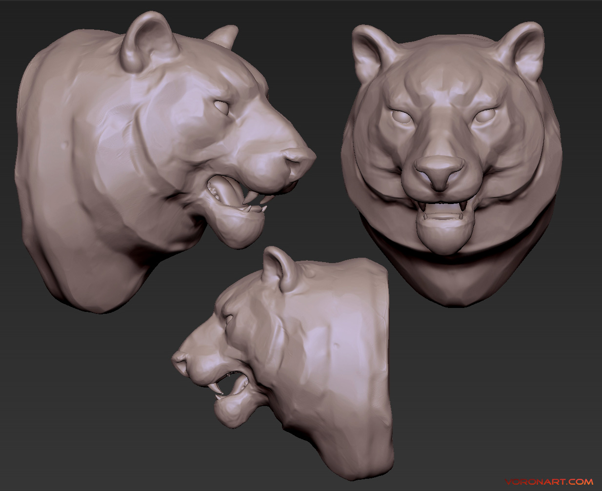 tiger head speed-sculpt high poly 3d model