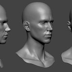 Young man head sculpture. Нigh poly 3d model