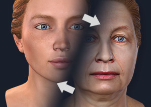 Woman face age related changes. 3d Morphing