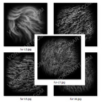animal fur alpha textures