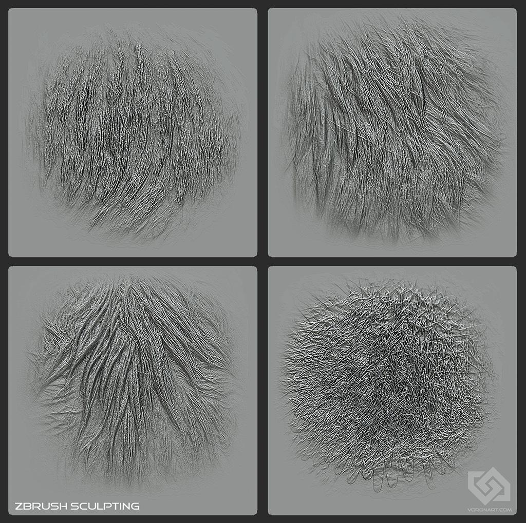 Текстуры Птичьих Перьев