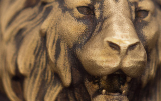 Realictic Lion head ring. Aged brass. Macro