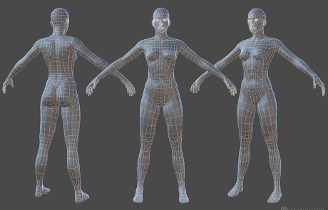nude woman rigged 3d character. A-pose. Wireframe