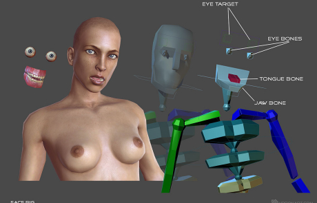 nude female rigged 3d character. Face rig