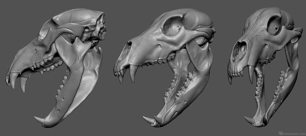 Buy bear skull digital 3d model for jewelry design, 3d printing
