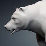 grizzly, bear base mesh 3d model, Bear skull base-mesh. Zbrush ZTL-file, MAX, FBX, OBJ, STL files