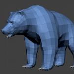 grizzly, bear base mesh 3d high polygon model , Bear skull base-mesh. Zbrush ZTL-file