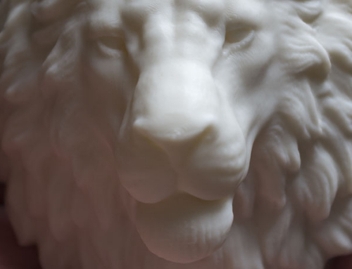Lion Head 3d print (ABS)
