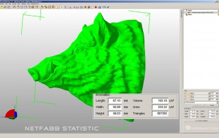Wild Boar head digital sculpture. netfabb statistic