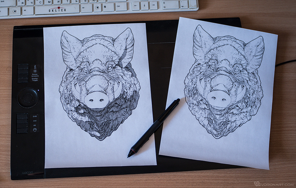 Animal Coloring page, download free. Wild boar