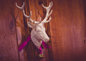 Deer, Stag, Reindeer head wall mount. Digital sculpture 3d print