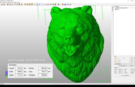 Bear Head digital sculpture. 3D model for 3d printing