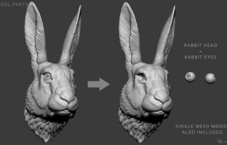 Rabbit, Hare head sculpture for 3d printing, CNC carving.