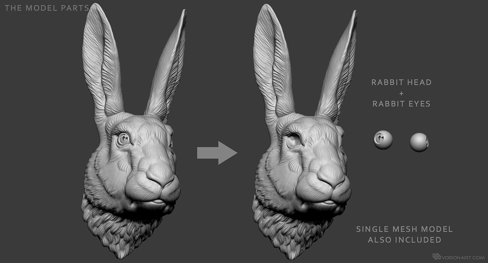 Zbrush digital sculpting