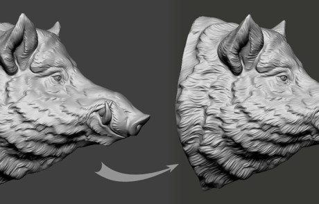 Wild boar head. 3d model fur adjustment