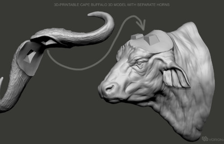 Cape Buffalo head 3d printable digital sculpture with separate horns.