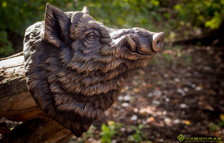 Buy Wild Boar head sculpture. Wall mounted faux taxidermy, antique bronze