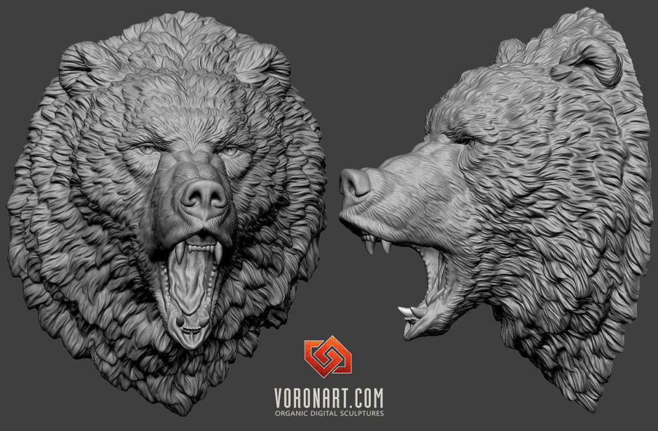 Angry brown bear grizzly animal head digital sculpting in zbrush