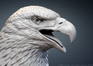 Bald Eagle head digital sculpture 3d model. For 3d printing, CNC carving