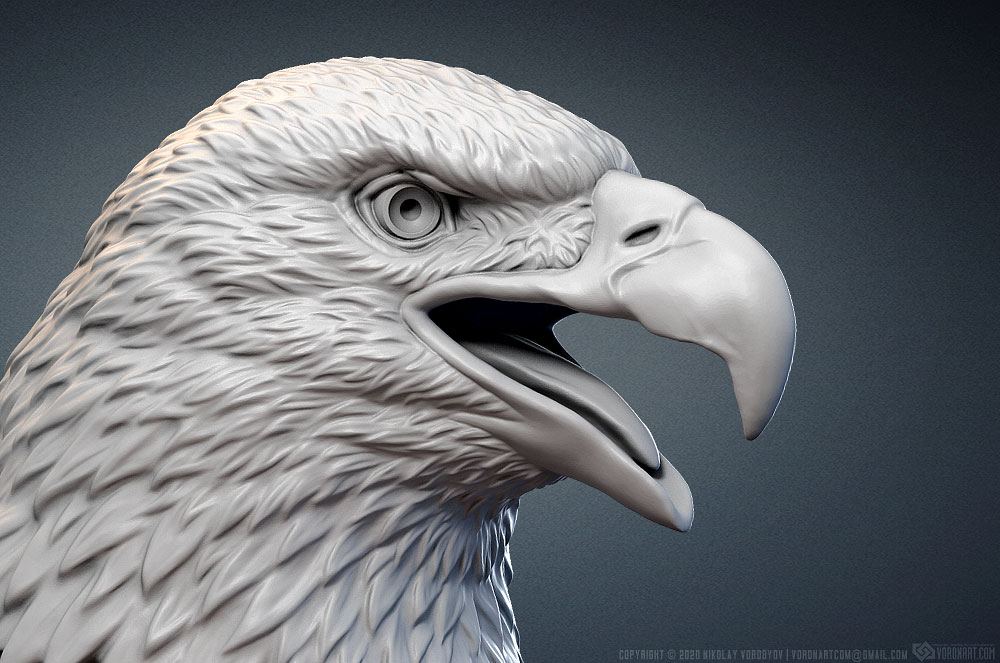 Bald Eagle head sculpture 3d model
