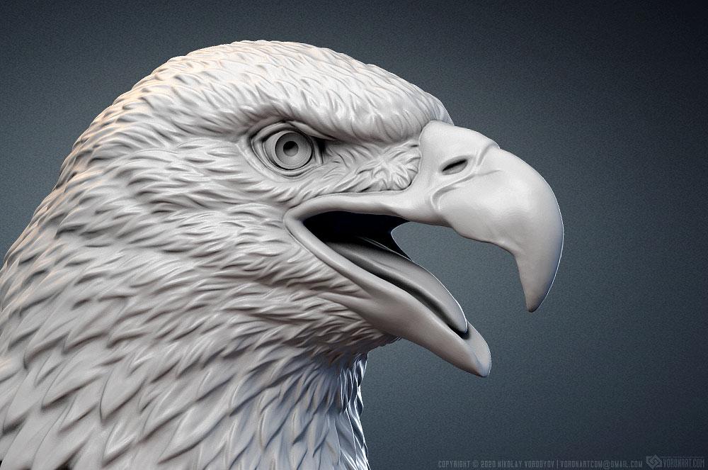 Bald Eagle head digital sculpture 3d model. For 3d printing, CNC carving