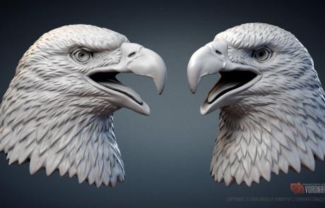 Bald Eagle head 3d model STL, OBJ files for 3d printing
