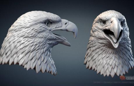 3d printable Bald Eagle head sculpture. STL, OBJ files